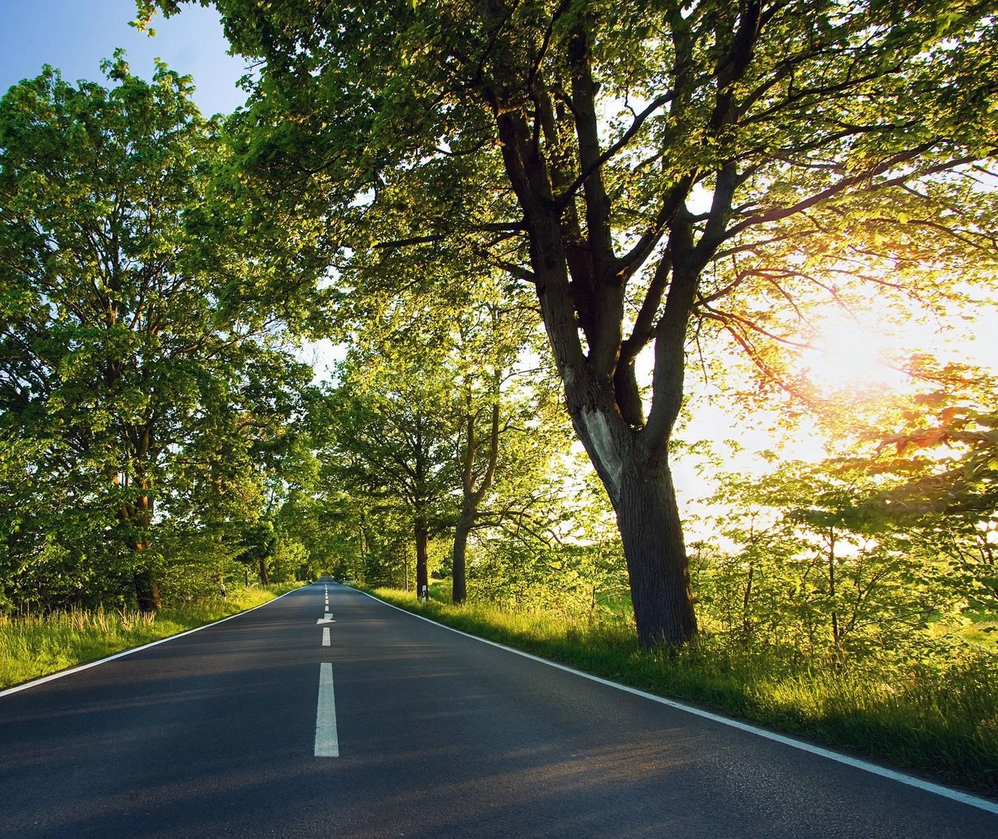 Beautifull Road