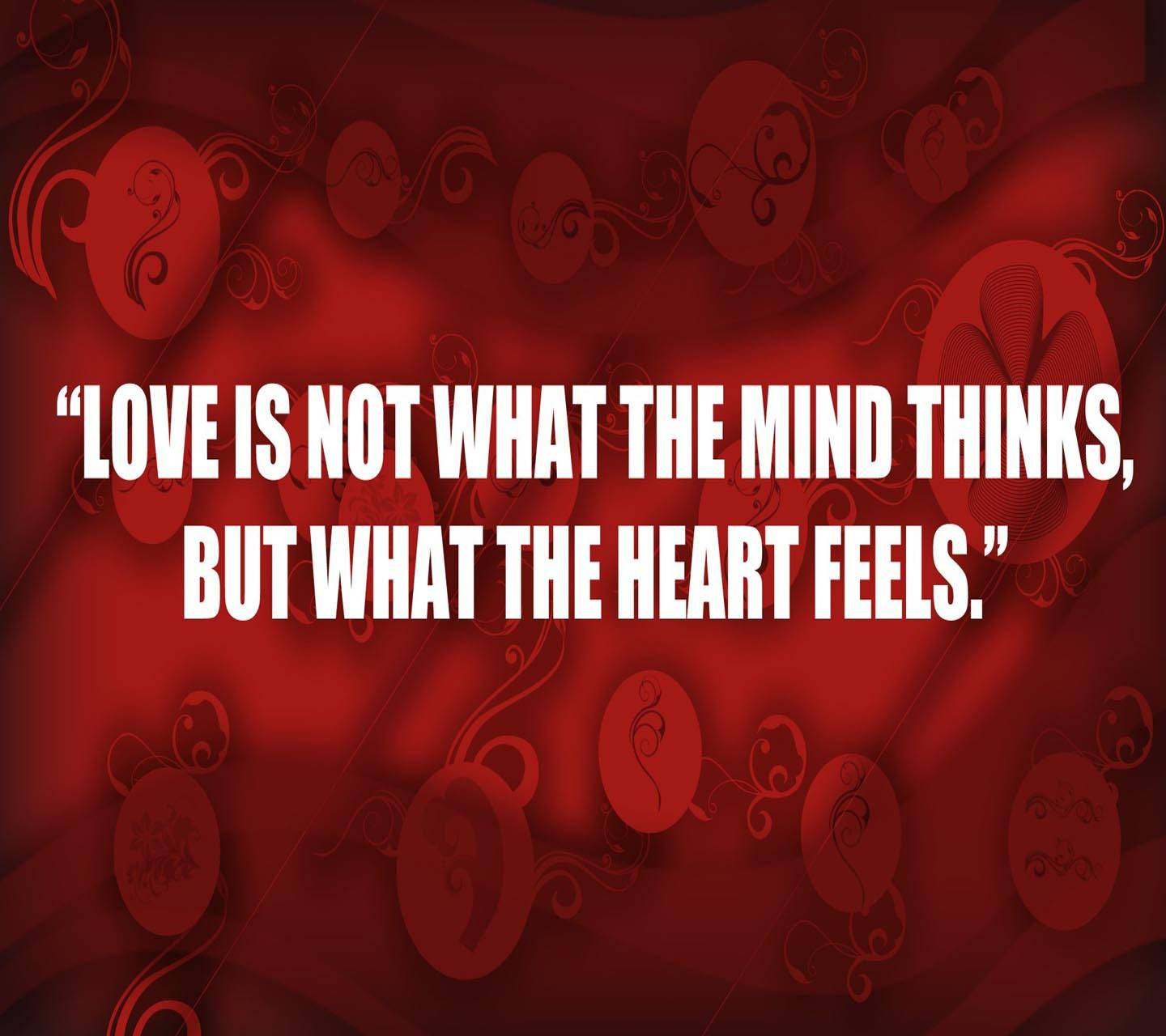 Quote Abt Love