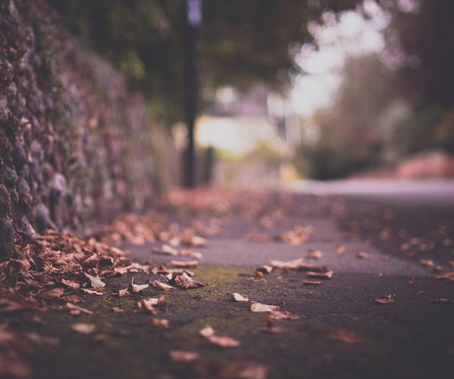 Dream Sidewalk