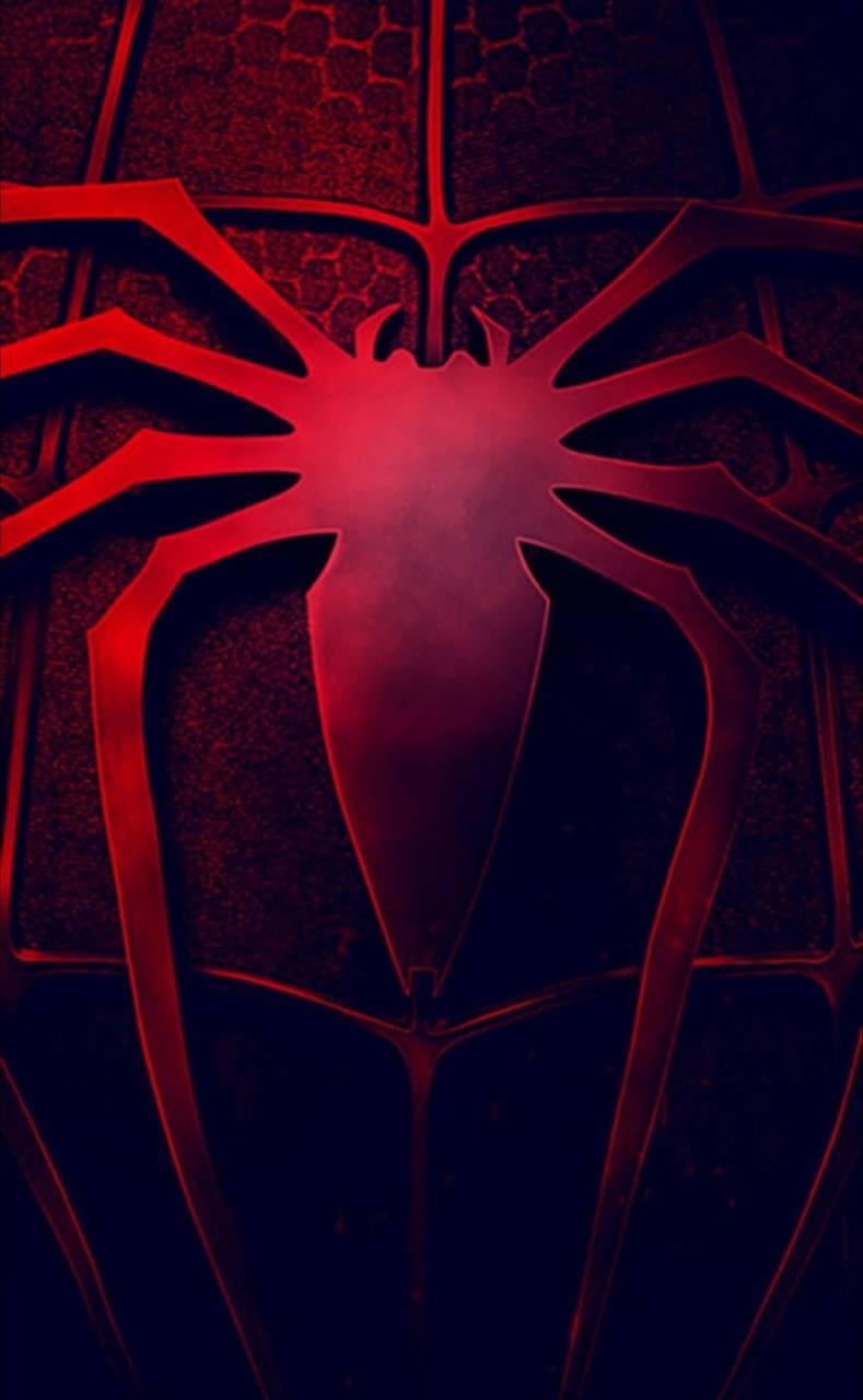 Spiderman spider