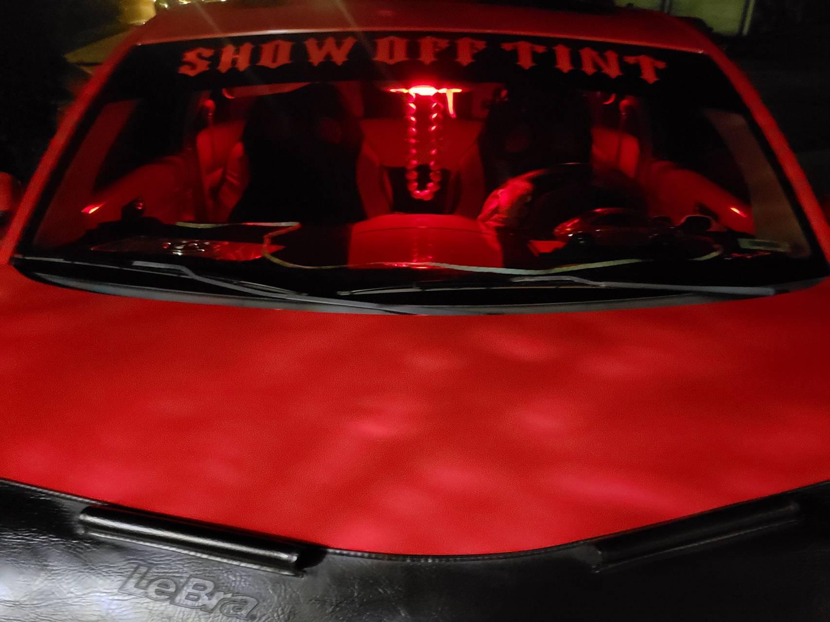 SHOW-OFF-TINT