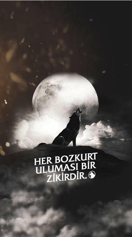 Bozkurt Wallpapers Free By Zedge