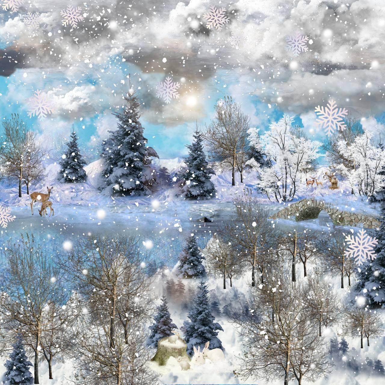 Christmas senery