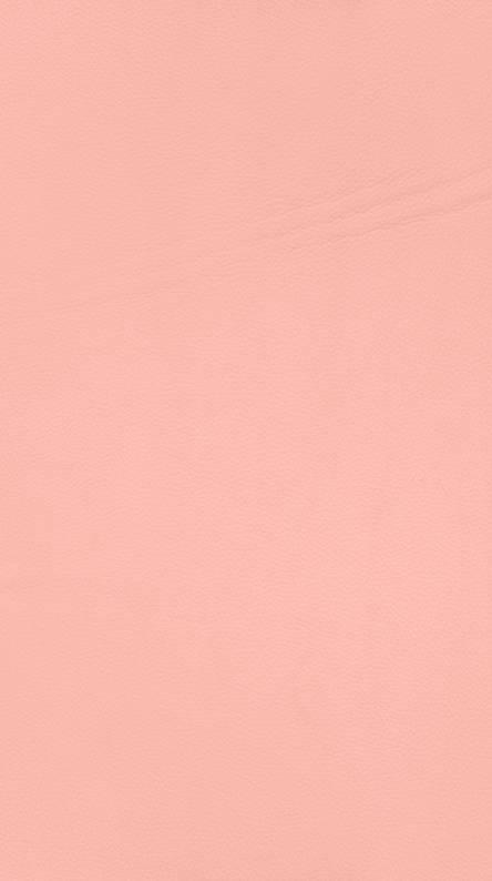 Campo rosa