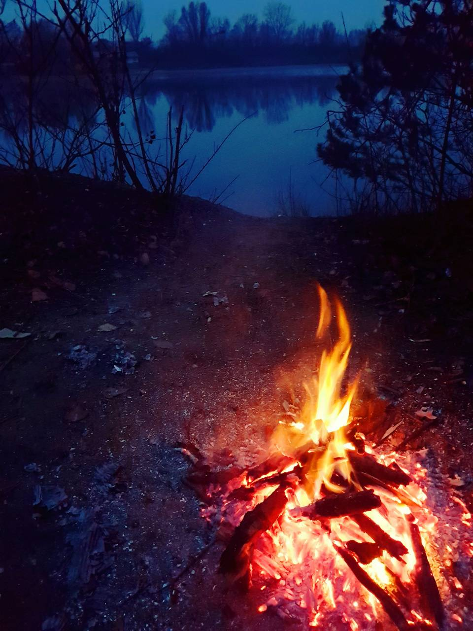 Forest Fire On Lake