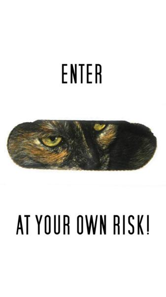Your Own Risk Cat