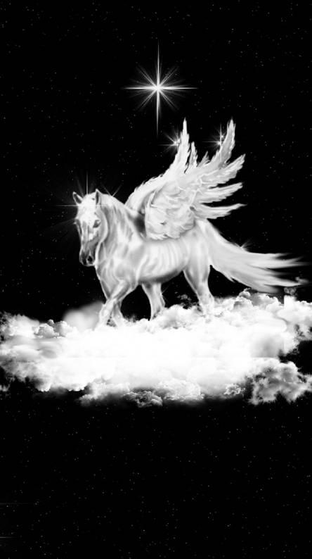 Pegasus Resting 4