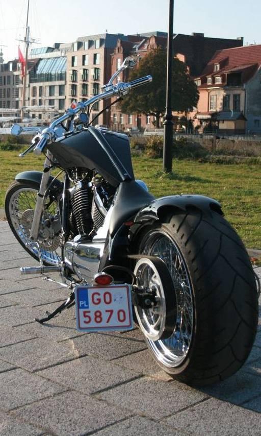 Custom Kawasaki