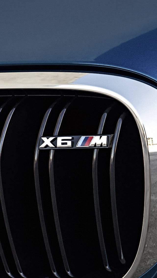 X6M Badge