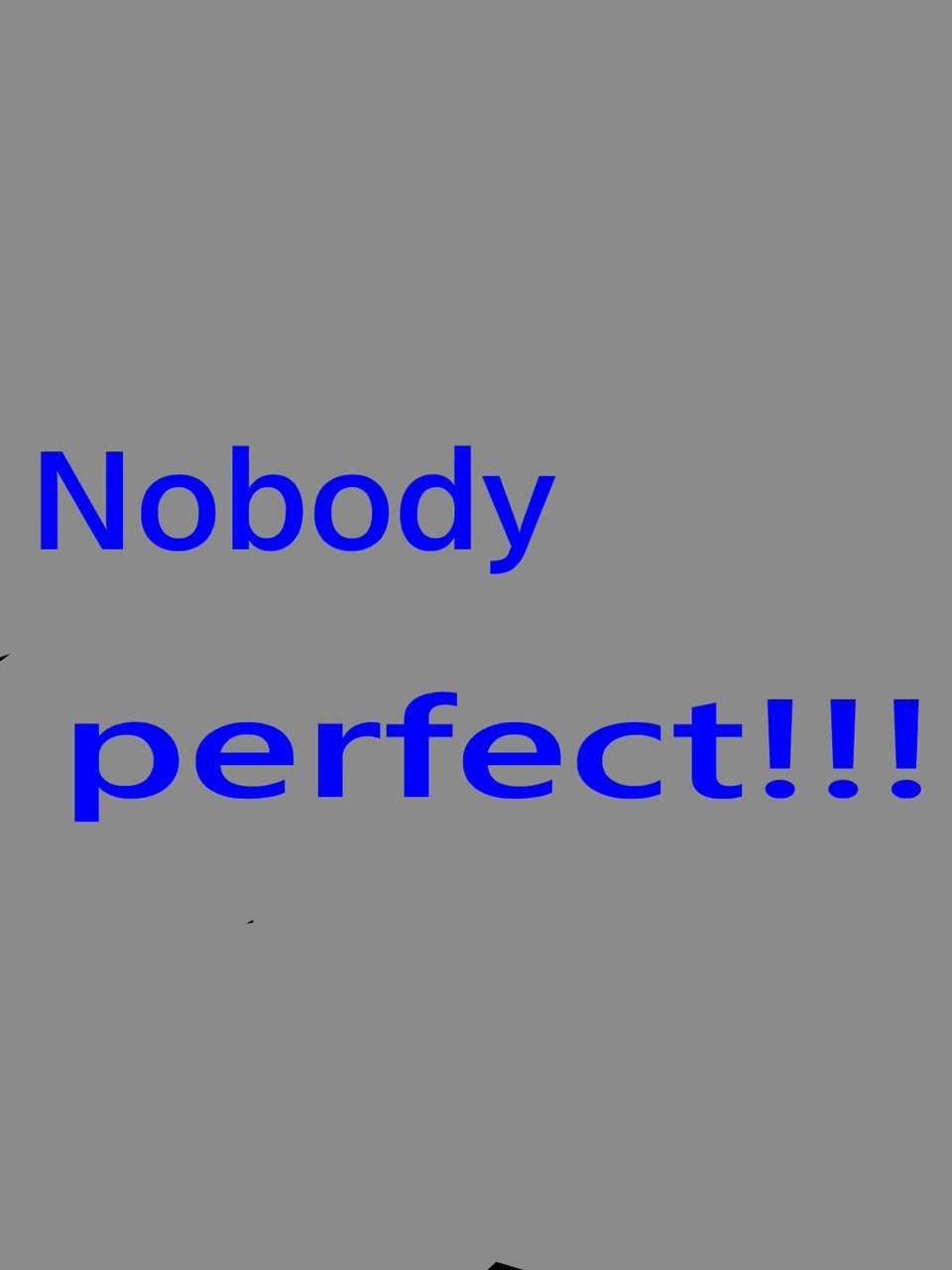 Nobody Perfect