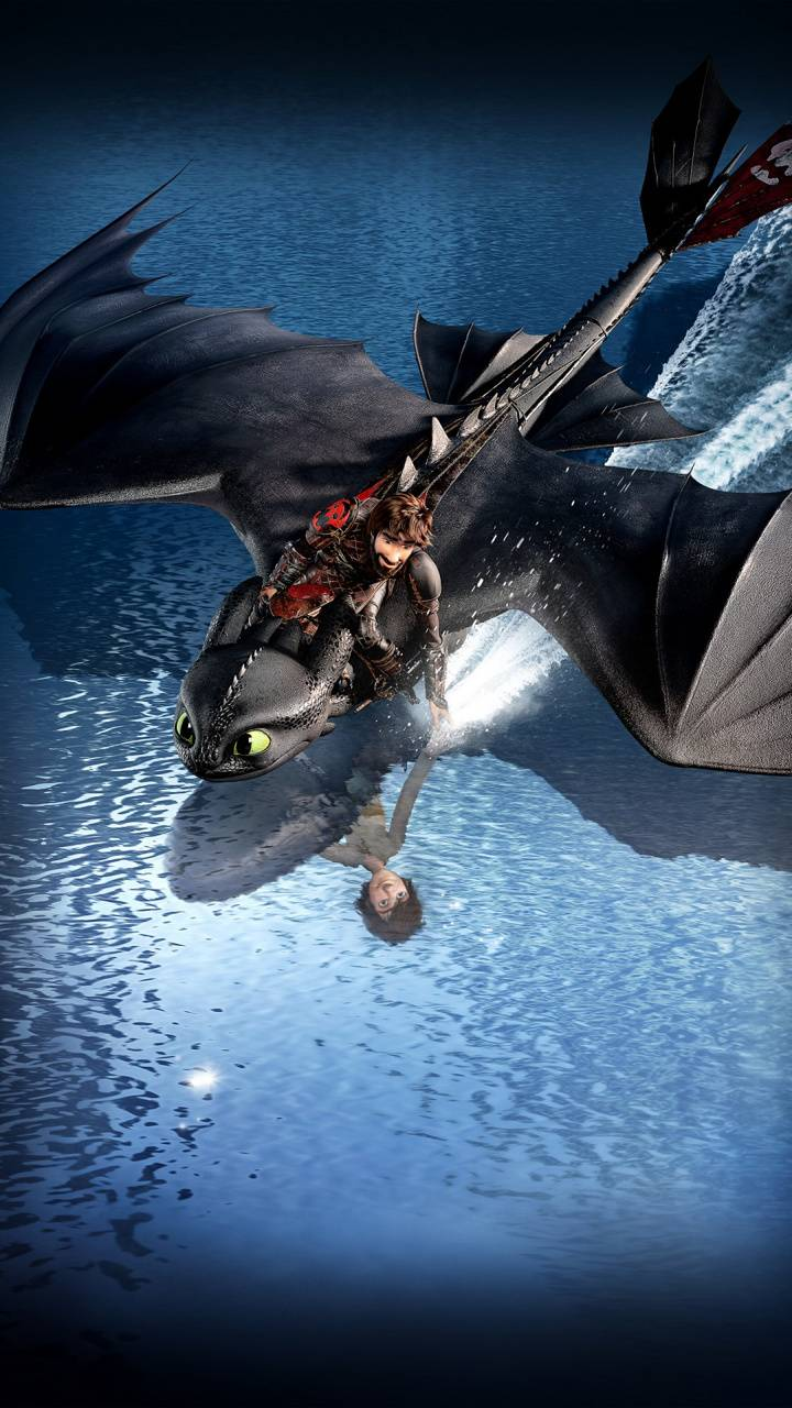 Toothless and Hiccup