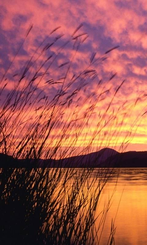 Lake Pend