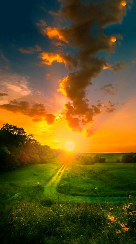 Hd nature wallpapers free by zedge - Beautiful nature wallpaper zedge ...