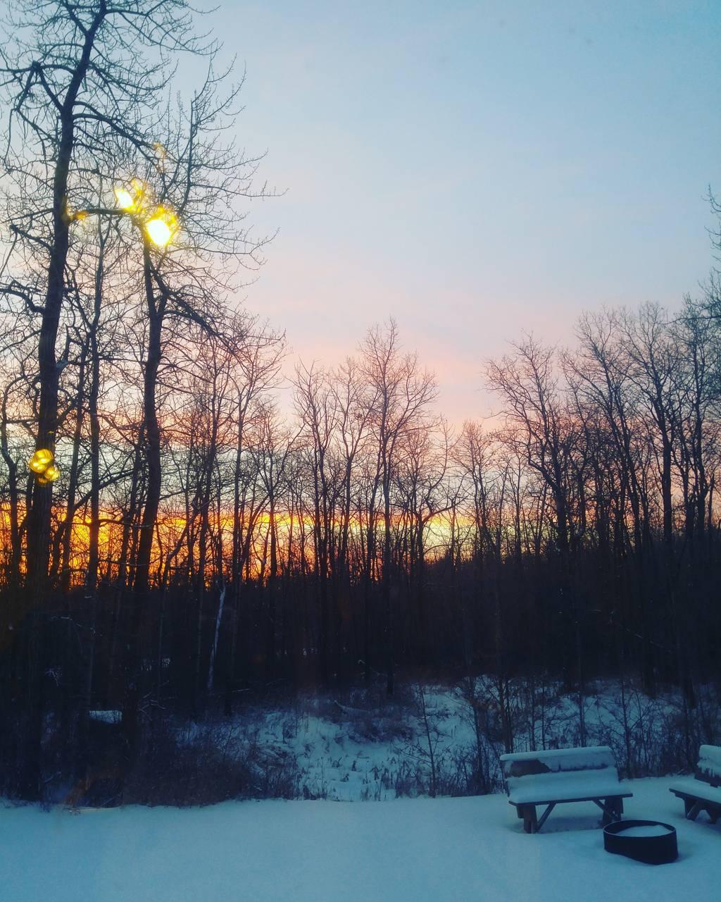 Quiet Winter Evening