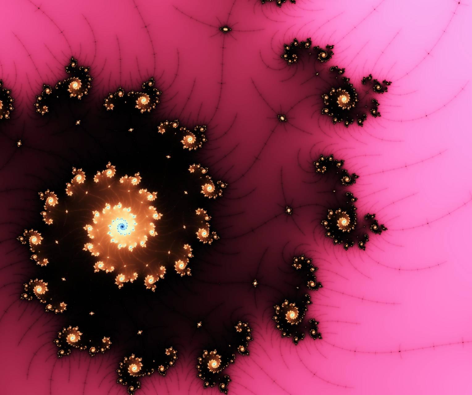 Rosespiral