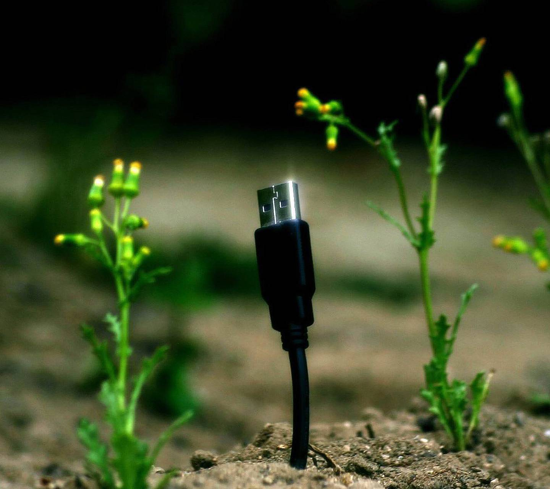 Technology vs Plants