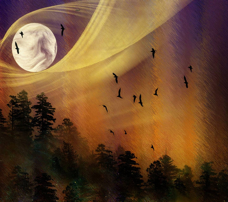 Full Moon And Birds