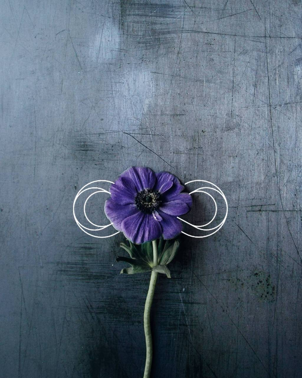 Flower  kiddogram
