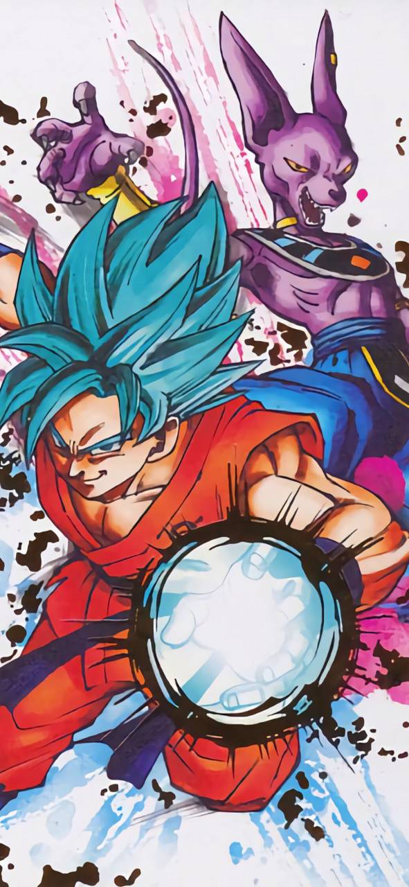 Goku and Beerus