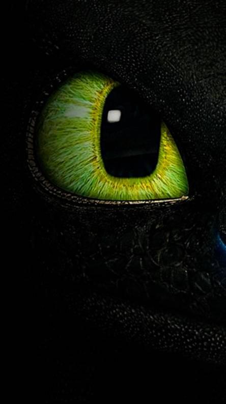 Toothless eye
