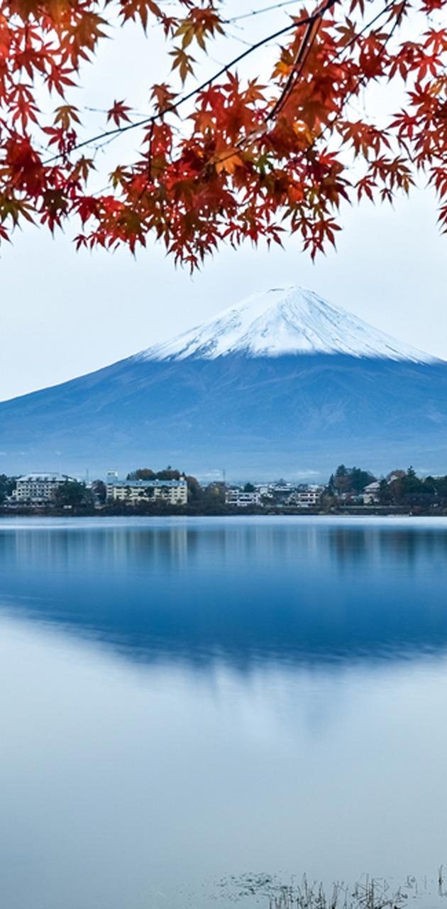 Snowy Fuji