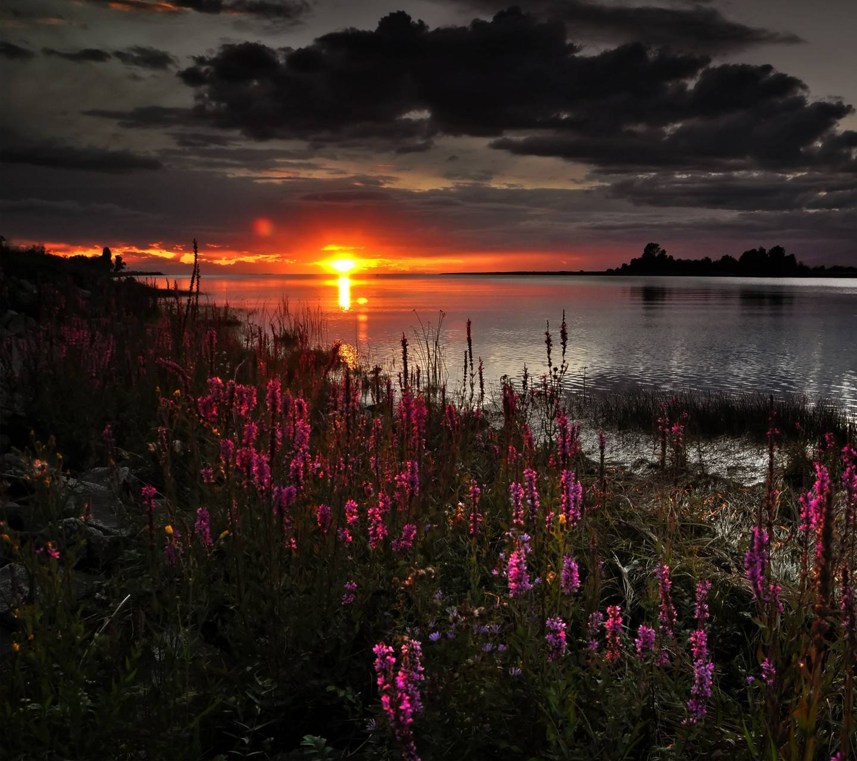 Little Sunset