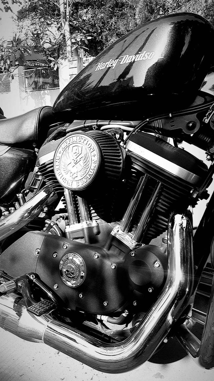 Black HarleyDavidson