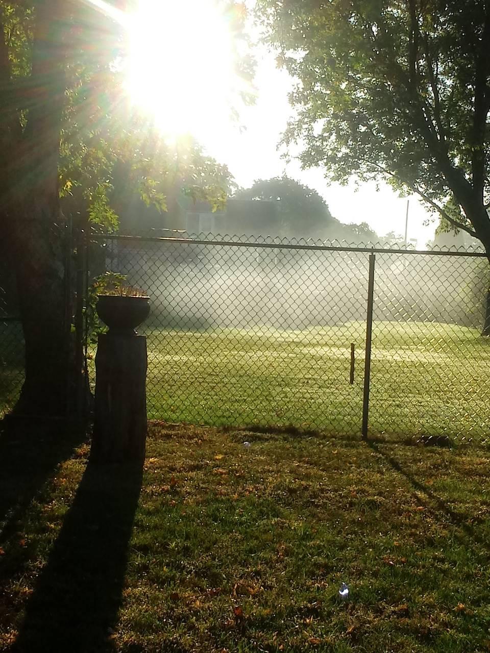 Mist beautiful