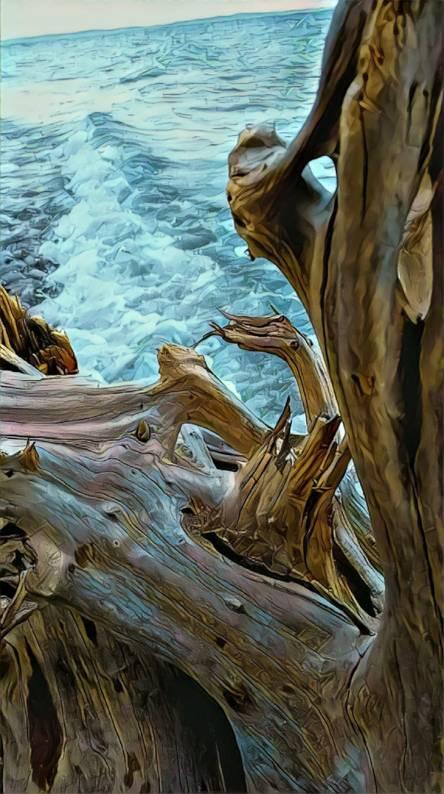 Beachwood Waves