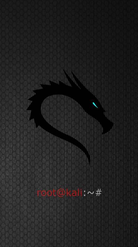The Red White Dragon Kali Linux Linux Wallpaper