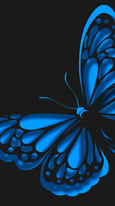 Black Blue Butterfly Wallpaper Iphone