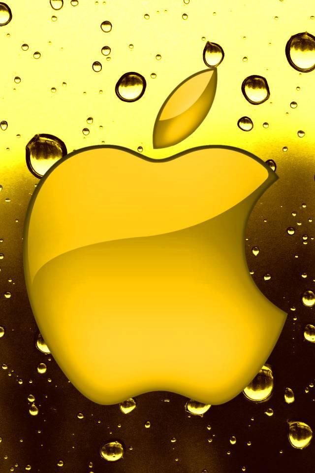 несколько картинка для айфона желтого цвета традиционному гипсу есть