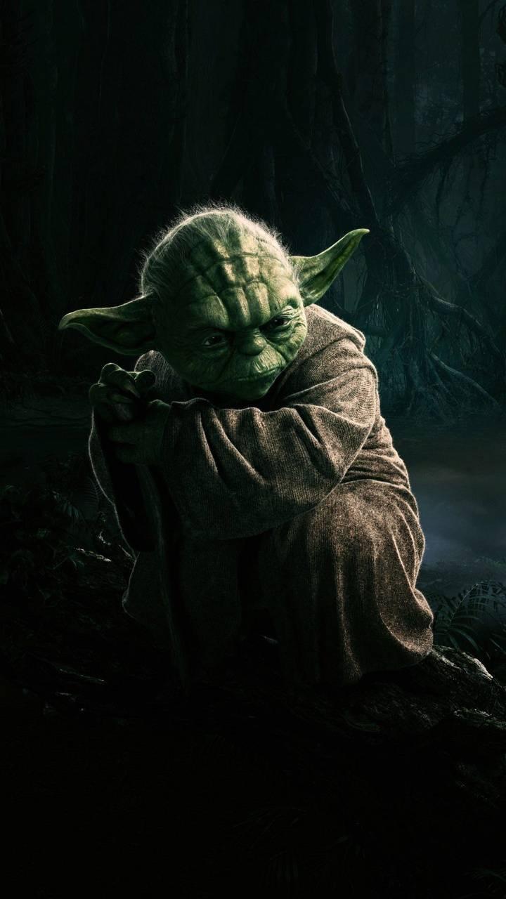 Old One Yoda