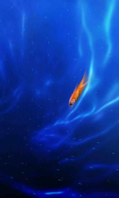 Swim Fish Blue