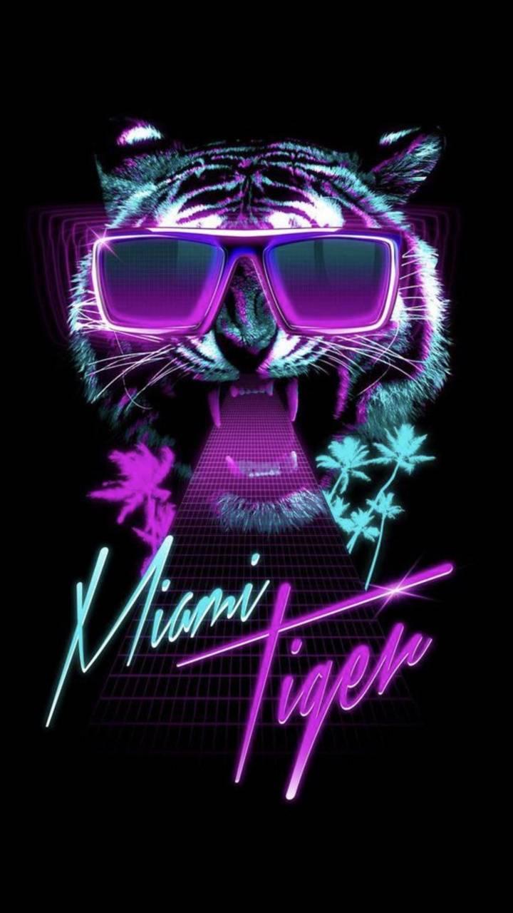 Miami Tiger