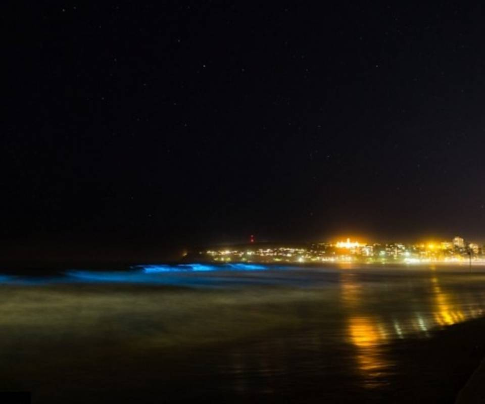 blue waves at night
