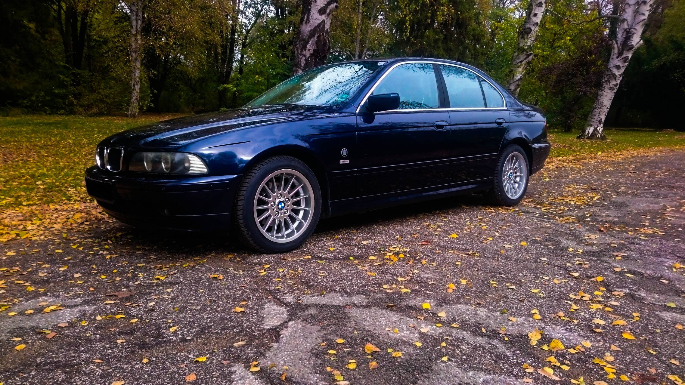 BMW E39 autumn