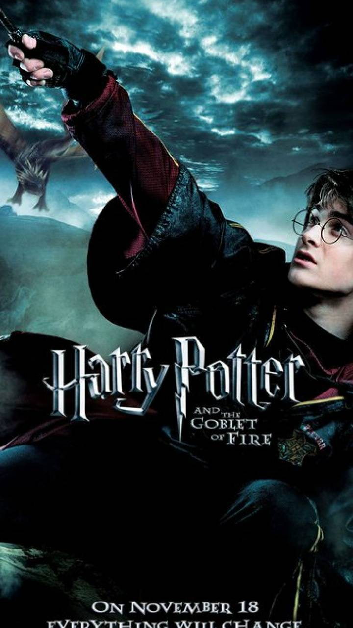 Goblet of Fire 16