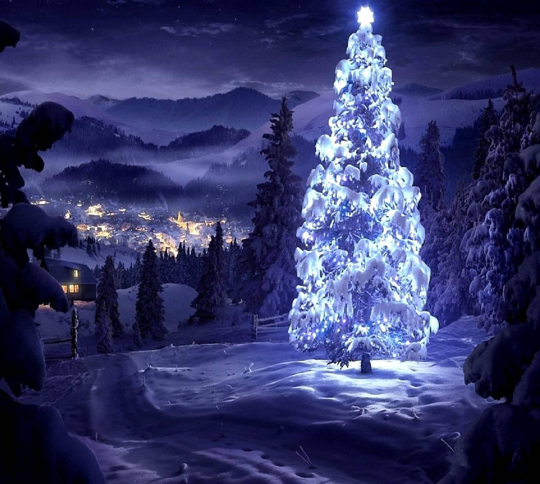 to meet Christmas