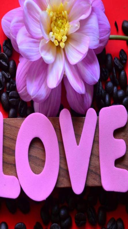 Love latters