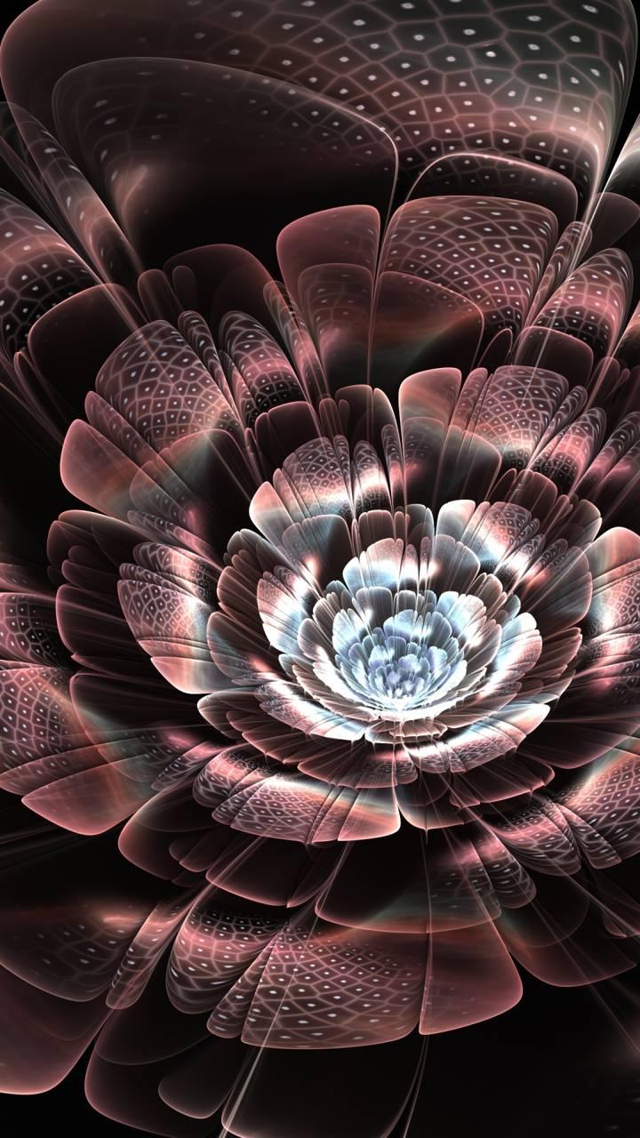 flower petals light