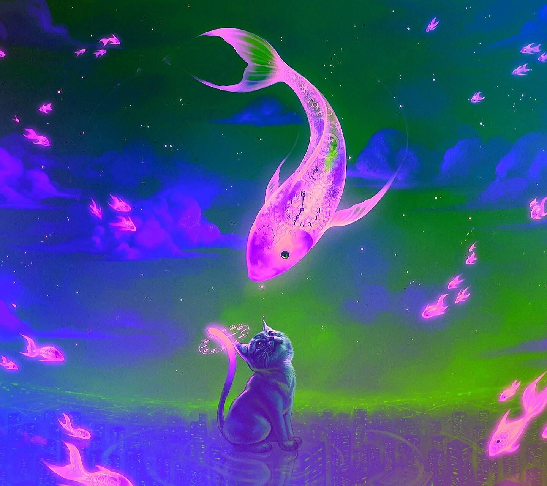 Kitty and Kio fish