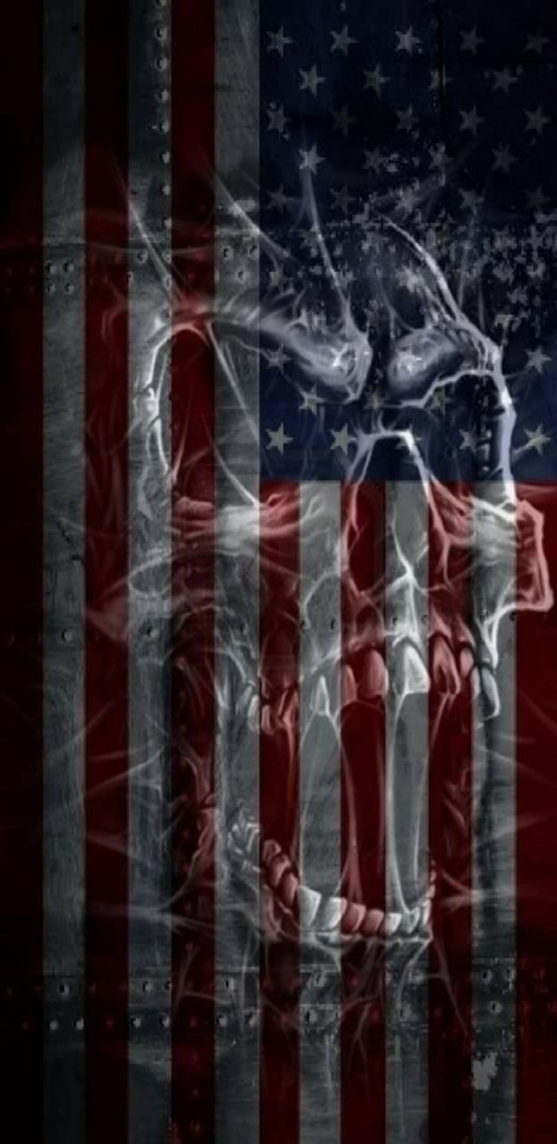 USA Skull Flag