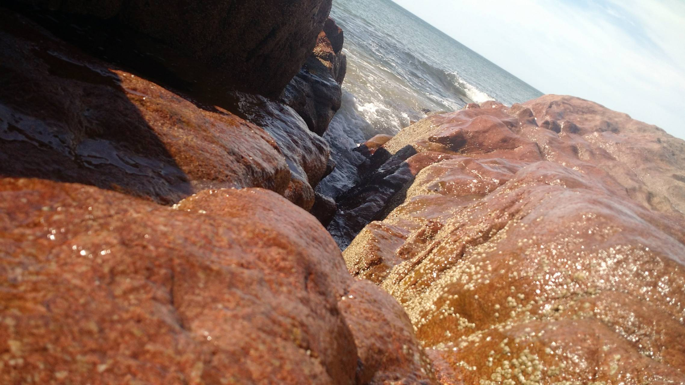 Mar and rocks