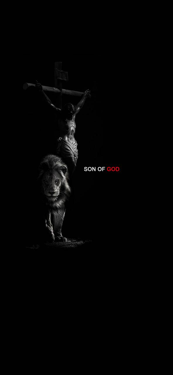 Son of God 2