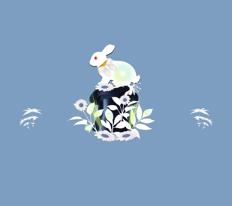 Rabbit hat 2