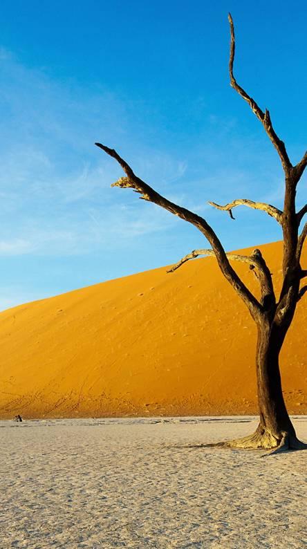Htc Desert Hd