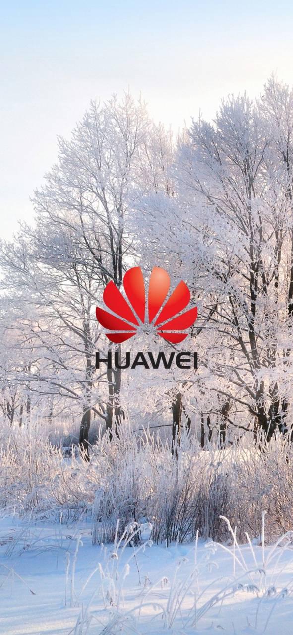 Huawei winter
