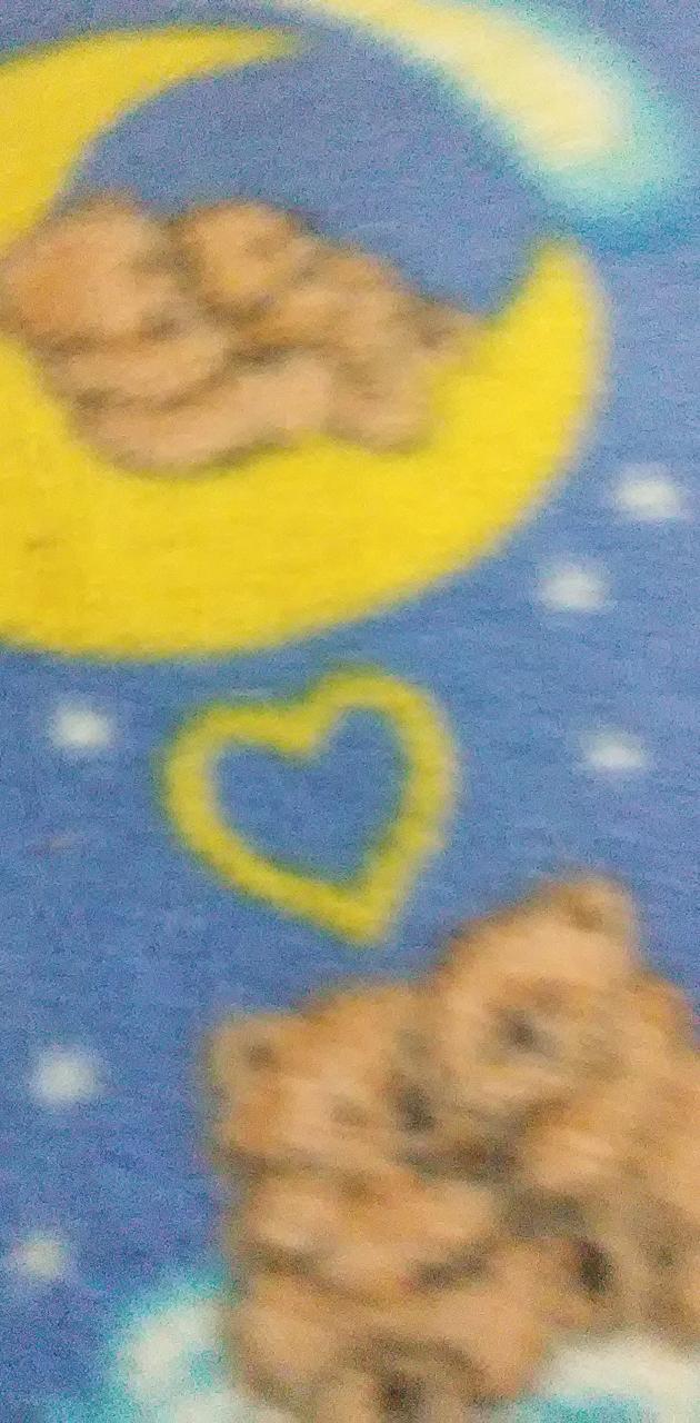 Teddy bear on a moon