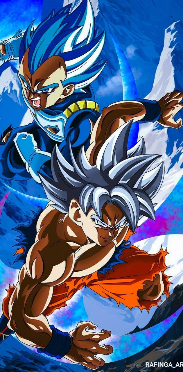 SSB Vegeta X UI Goku